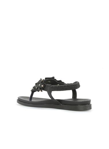 Divarese Divarese 5023060 Troklu Kadın Sandalet Siyah